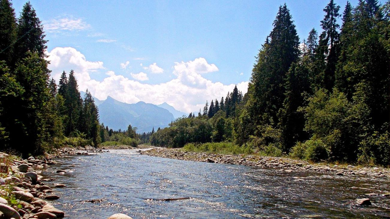 Fly fishing experience beneath Tatra mountains peaks - Zakopane area